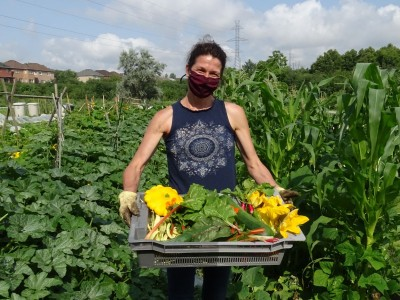 Residents create 'intimate relationships' with food by growing their own in community gardens