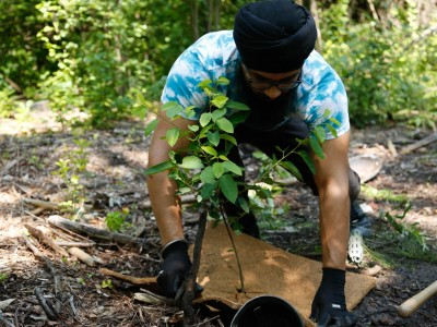 Students plant trees in one of Brampton's most sensitive ecosystems