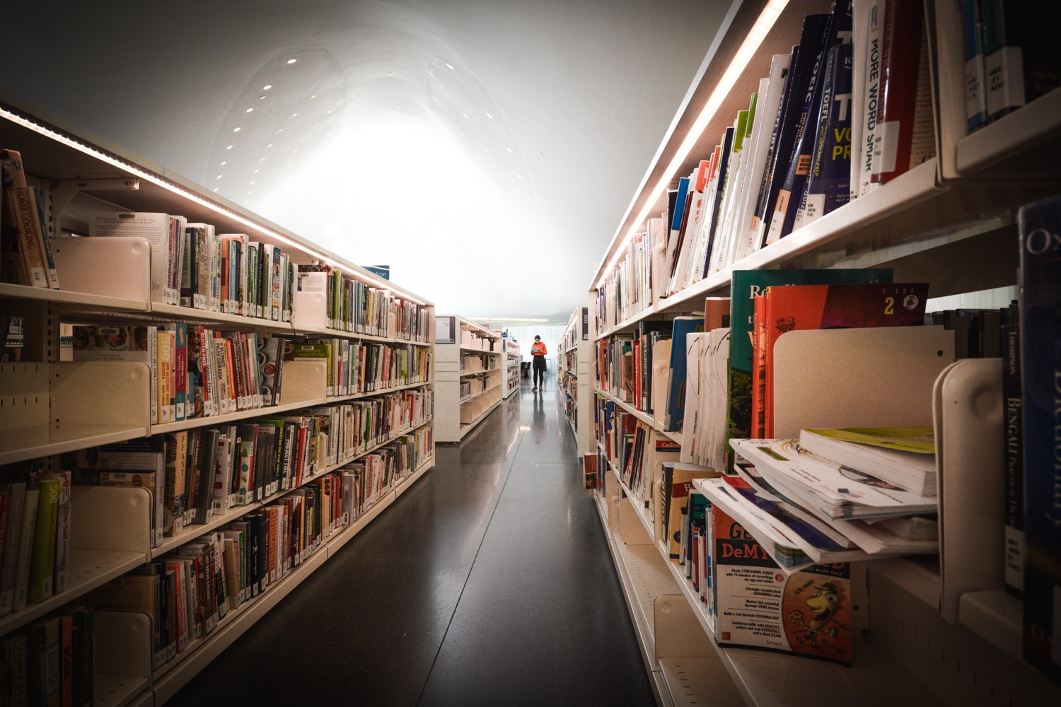 As the industry faces an uncertain future, Brampton's library system is ahead of the curve