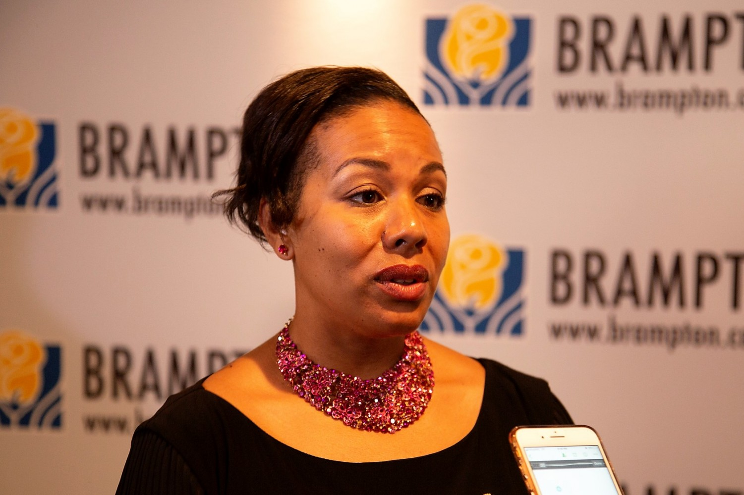 Councillor Charmaine Williams should be lauded for her progressive stance on policing, but she shouldn't stand alone