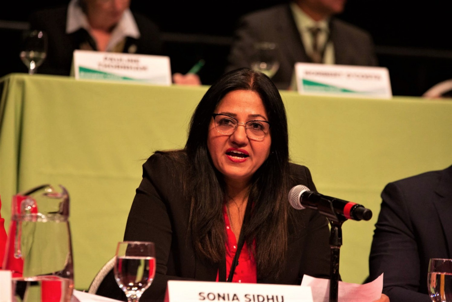 Sonia Sidhu advocated on health-related issues in Ottawa, but was quiet beyond that