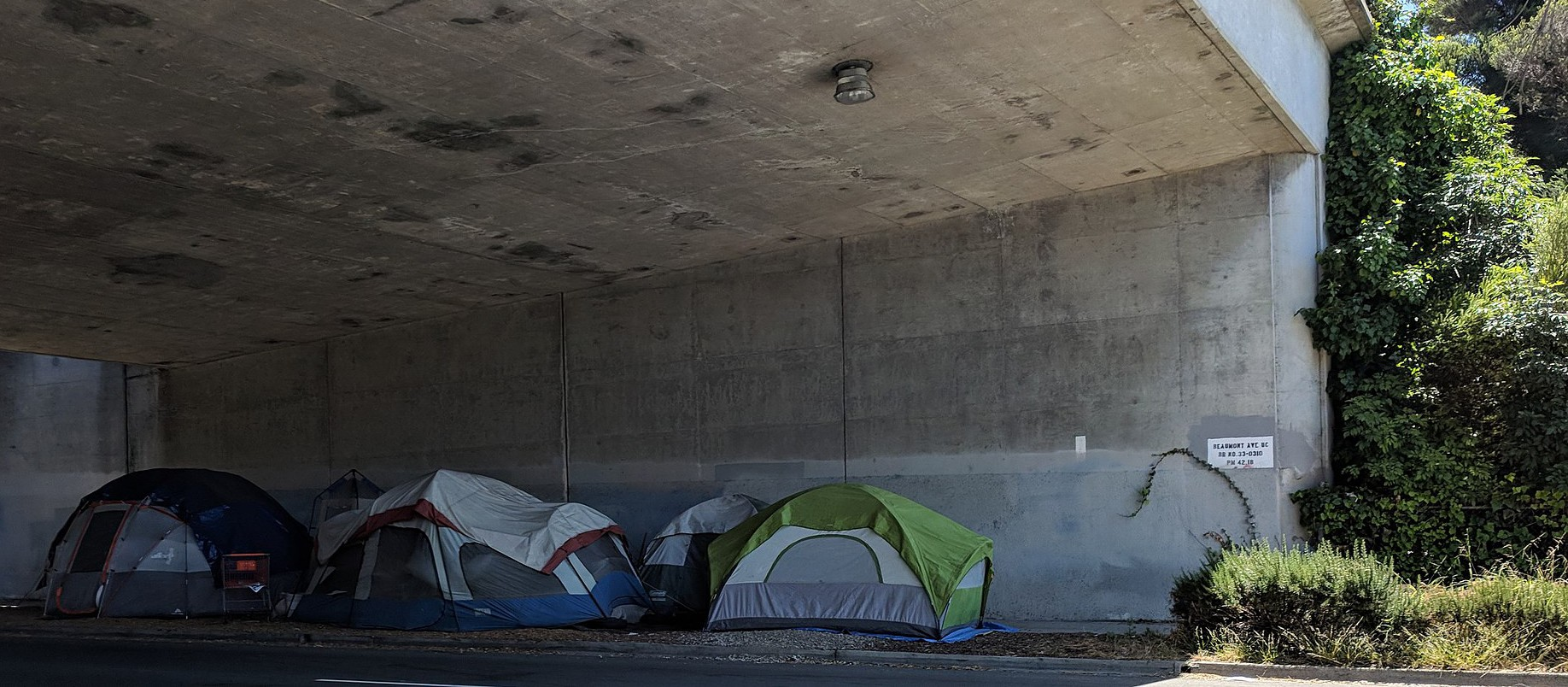 Tent encampments are popping up across Peel in the age of COVID-19; a recent UN report says Canada is failing on the issue